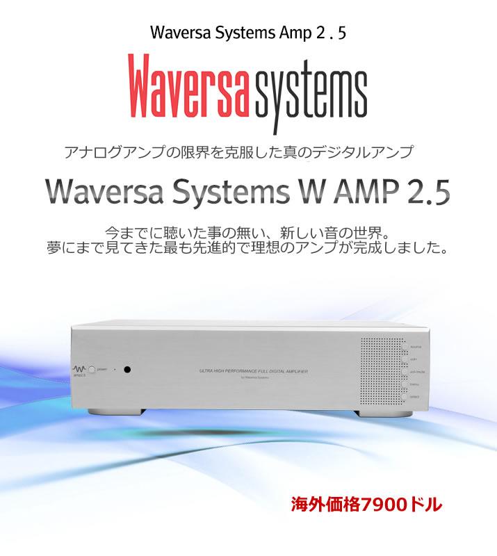 WAMP2.5 Full Digitial Integrated Amplifier 1